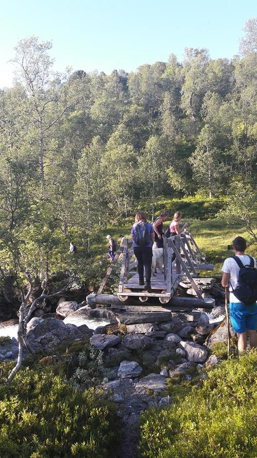 19.07.2017 - Kårstadstøylen – Myklebuststøylen – Verlostøylen