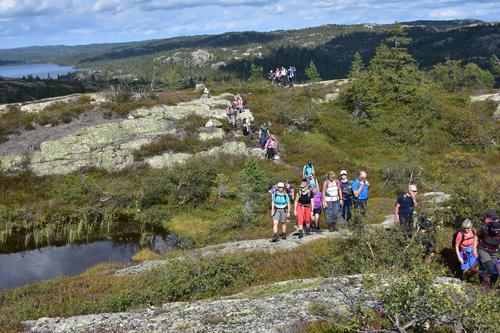 Utsikt mot Holmvann