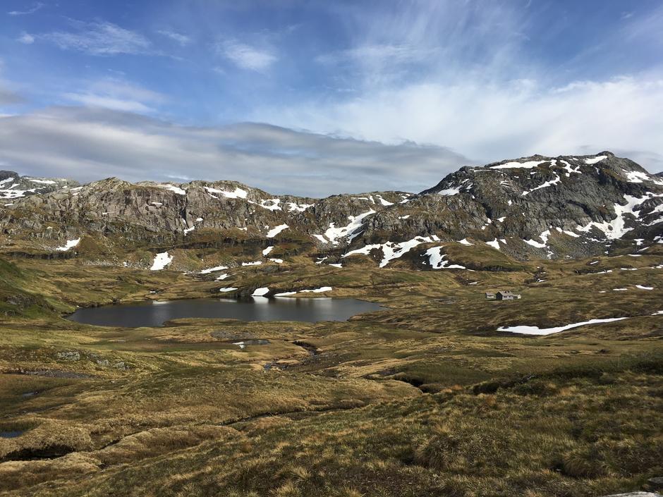 Onsdag 12.6: Ser du Vending? Sommersesongen har startet i Bergsdalen. God tur!