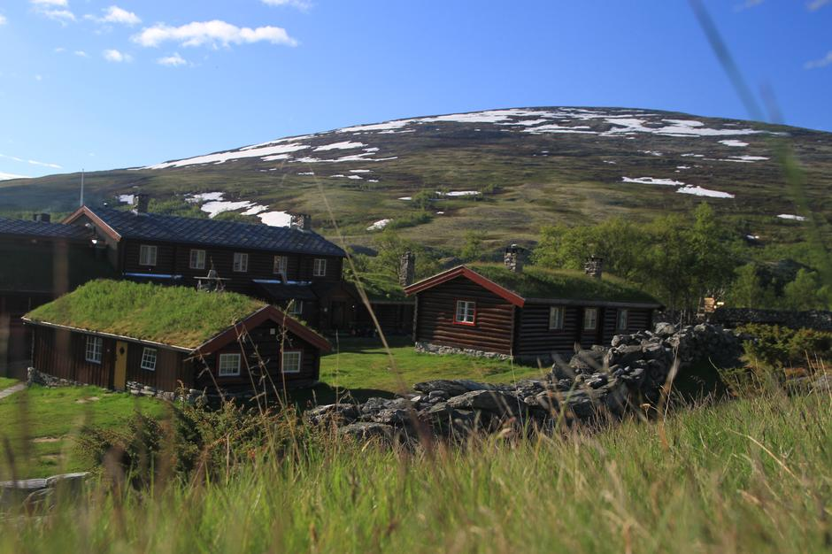 Sommer på Bjørnhollia i Rondane!