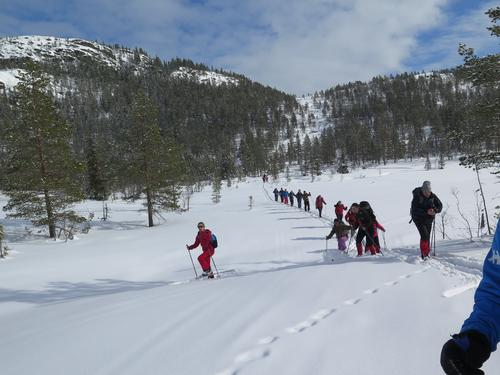 DET ER ENDA IKKE FOR SENT!    Skitur frå Vrådal over heia til Hauggrend med fyresdal turlag