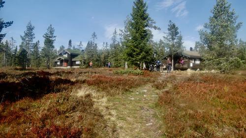 Tur til Blåmyrkoia 19.09.2018.
