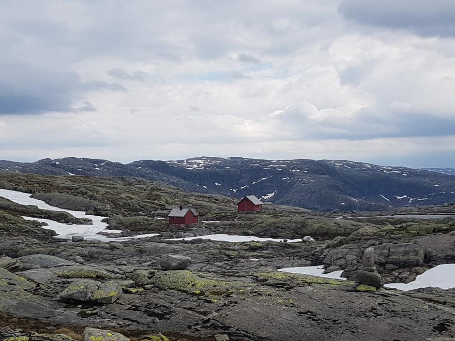 Fredag 14.6: Skavlabu i Stølsheimen. Snøfritt fra Mo.