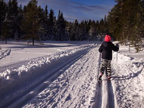 Skiforholdene på Svanstul 12.2