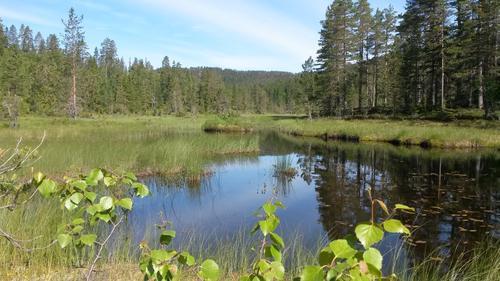 Ukas Tur - Rundtur fra Ravalsjø