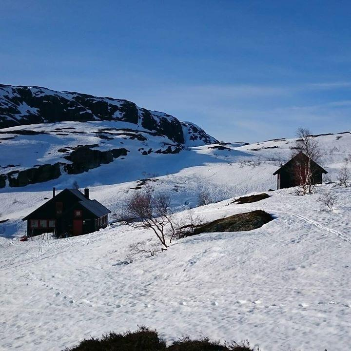 Grautheller 1 mai. Ski inn til hytta. Mulig å sykle eller kjøre inn Flatstødalen