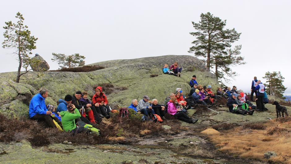 Nistepause i ly på Løytesdalsfjellet.