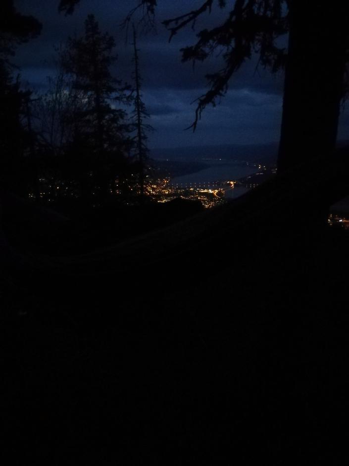 Utsikt fra hengekøya