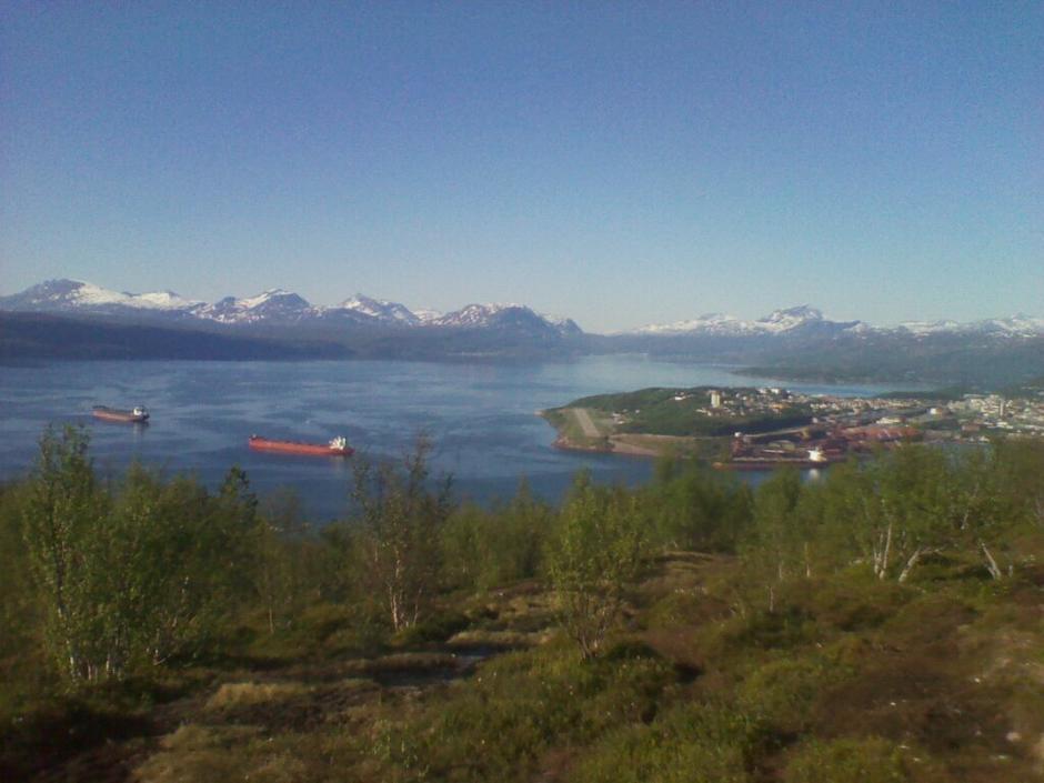 Utsikt fra Ankenesfjellet mot Narvik