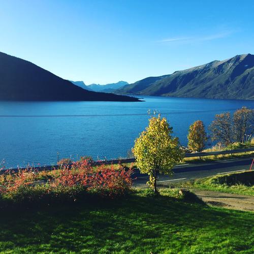 Bildet tatt fra Kveøy i Kvæfjord kommune i Troms. Fargekontrastene er store i høstsola.