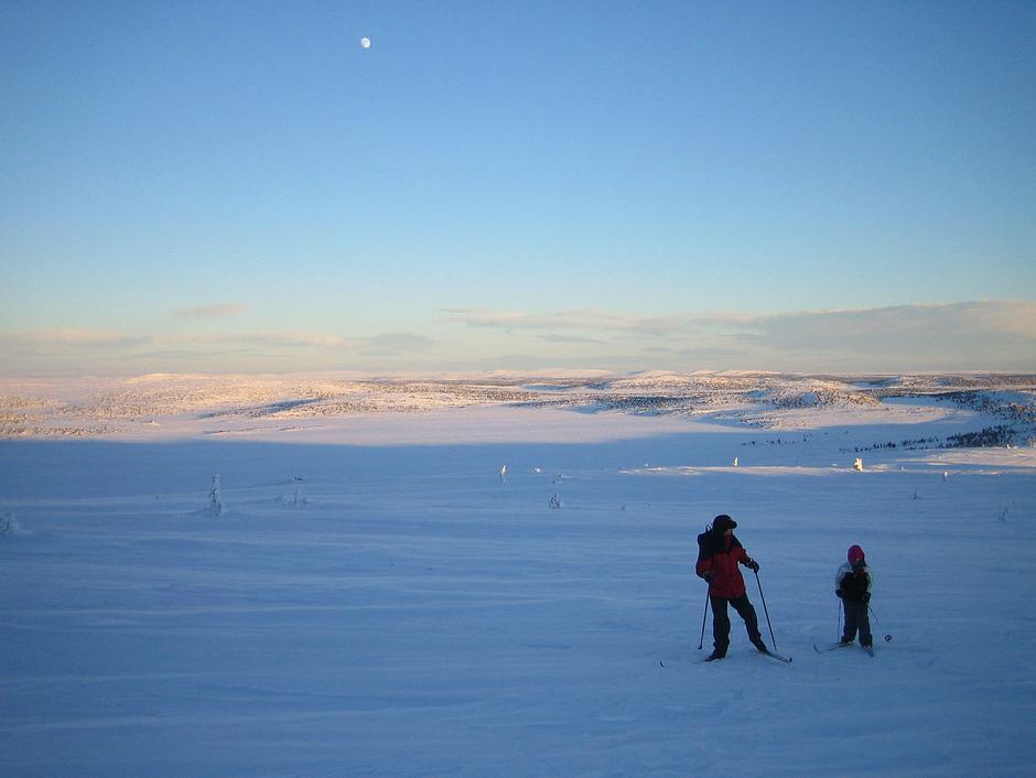 Snart på toppen av Nevelfjell! Vannet bak er Reinsvannet - ypperlig å gå rundt på treningsrunde.