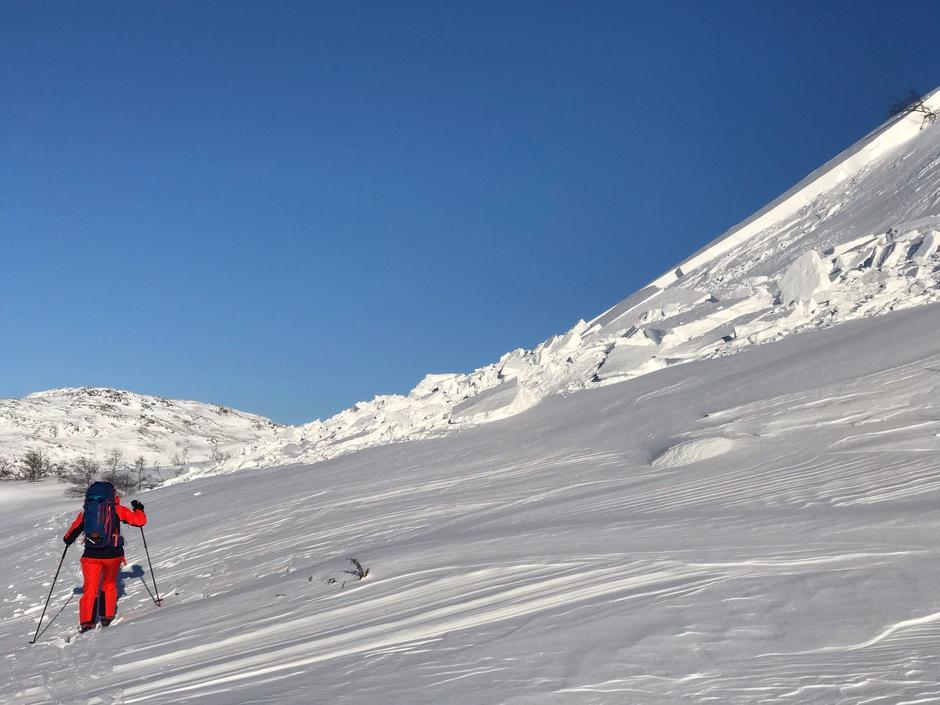 Typisk bilde av hvordan snøforholdene er for tiden. Bildet er tatt lørdag 6. februar på vei til Taumevatn. Hold generell avstand fra lesider. Følg kvistene!