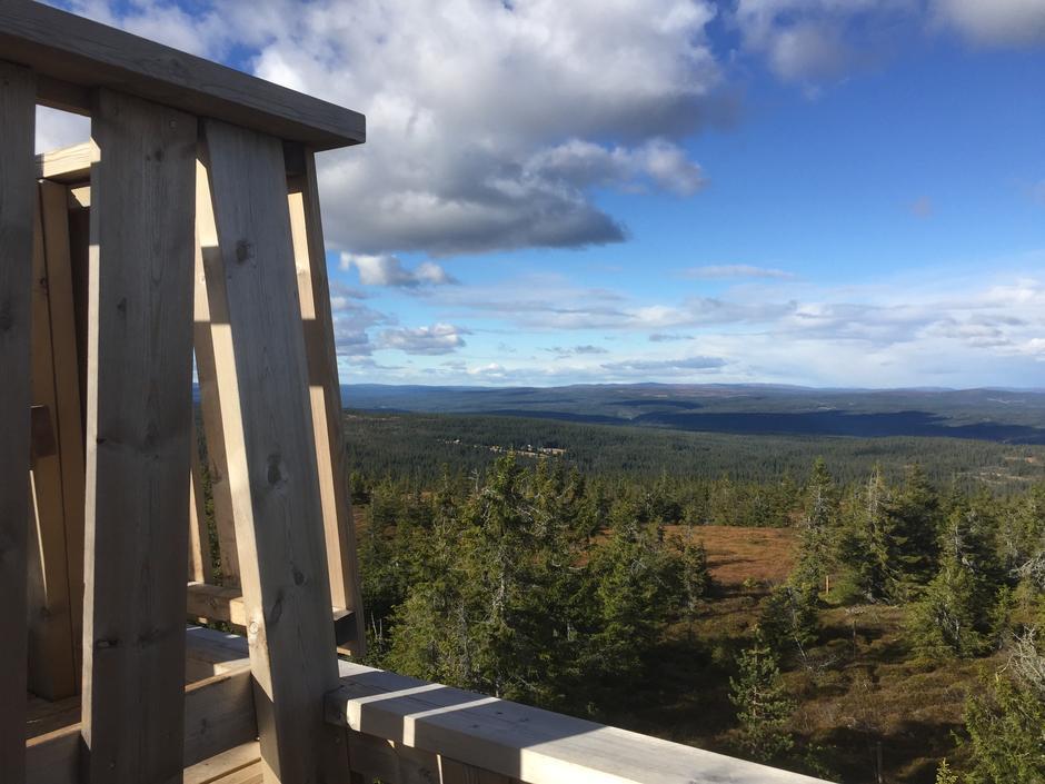 Utsikt fra tårnet på toppen av Gitvola.