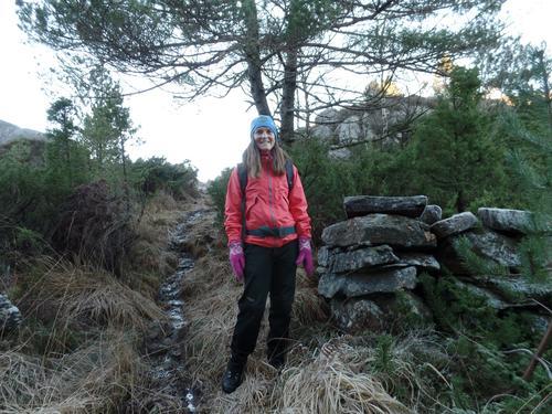 På oppdagelsesferd i Sund skogen