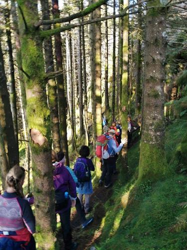 Byfjellstrimmen på tur i Hardbakkeskogen