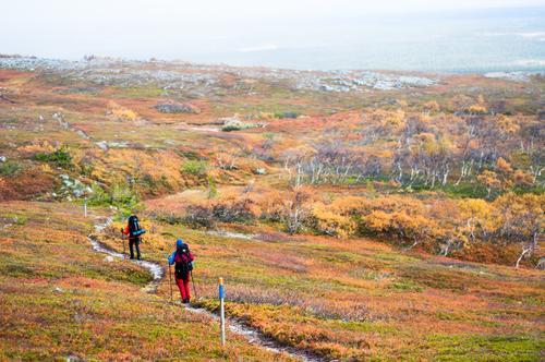 Fargerik tur i Bydalen en helg i oktober.