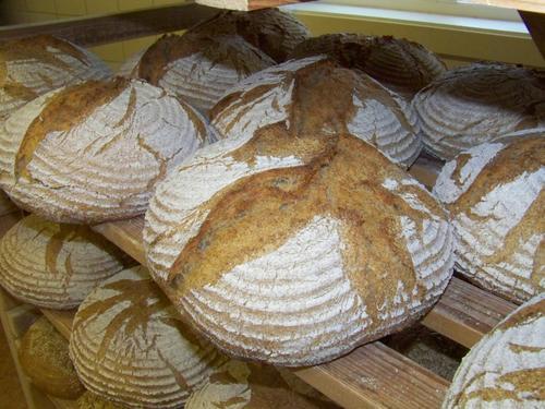 Steinovnsbakt brød!