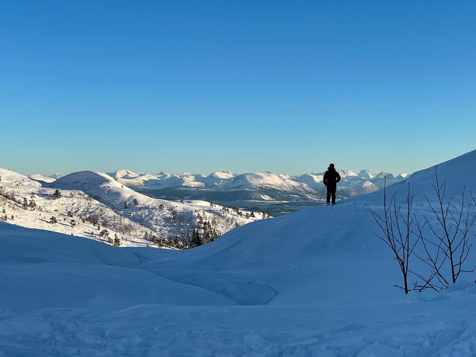 Skiløper i Moldemarka som speider mot Moldepanoramaet.