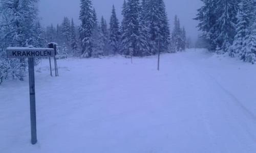 Uke 46: Nå kan du gå på ski på Hedmarksvidda!