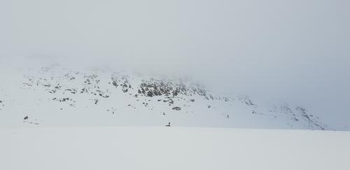 Saltfjellet