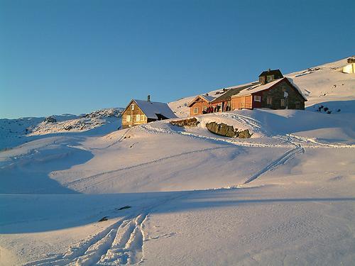 Hallingskeid i tidlig vintersol