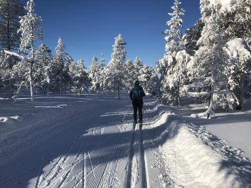 Drømmeforhold i skiløypa.