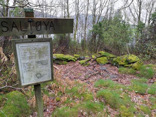 Husmannsplassen Saltøyna