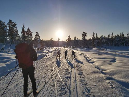 14.1.2021 - Vinter i fjellet og skiføre over 400-500 m.o.h