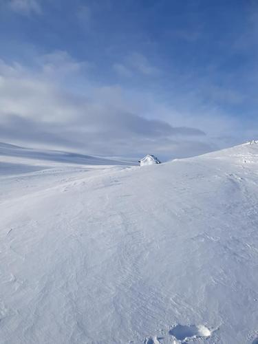 Uke 8: Føremelding for Hardangervidda