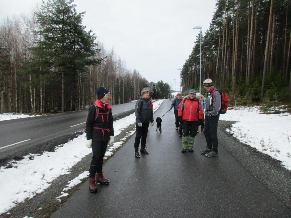 Svensrudmoen nær Ulvestøtta