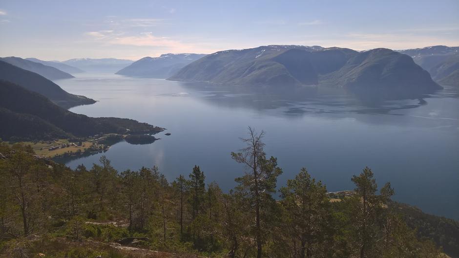 Utsikt innover Sognefjorden frå Høgkusen