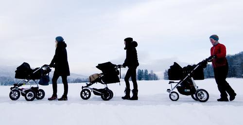 Trilleturer på Hamar etter nyttår