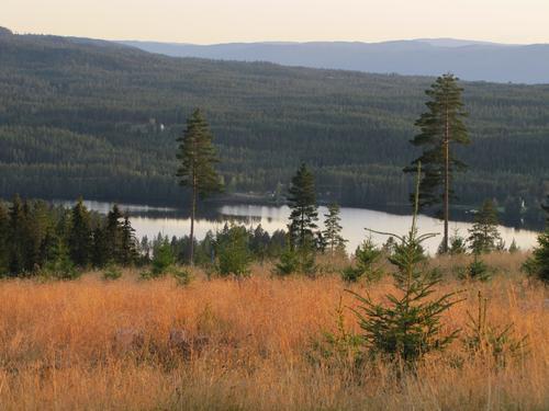 Utsikt mot Harasjøen