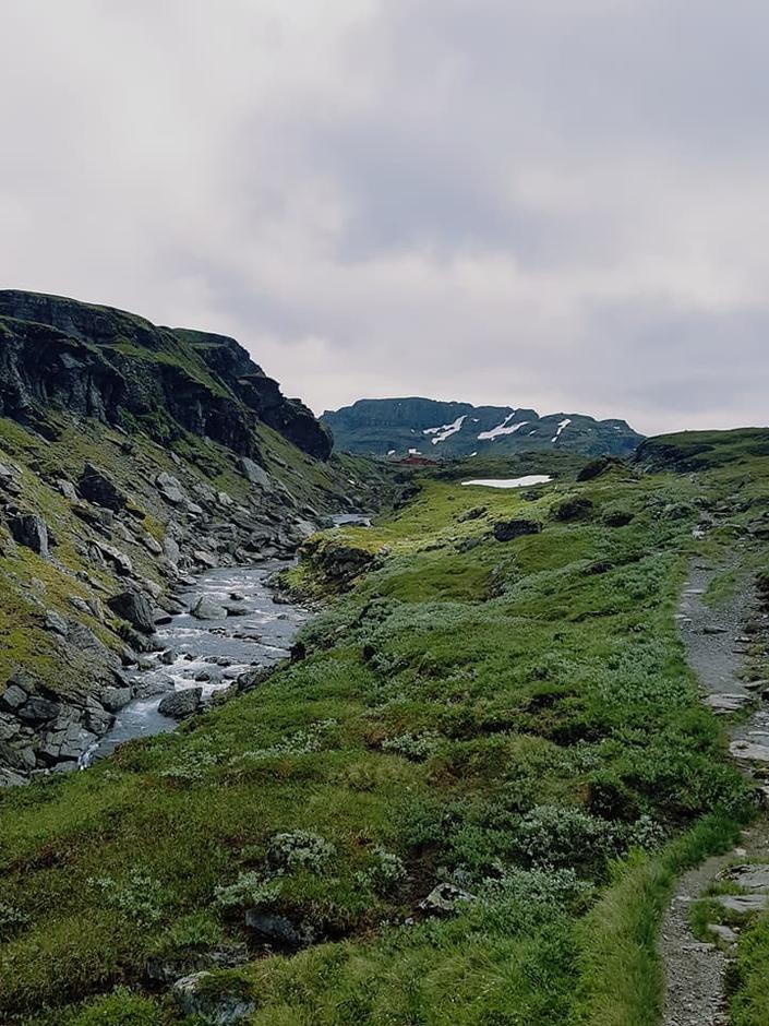 Fine forhold på vei til Stranddalen 12 juni.