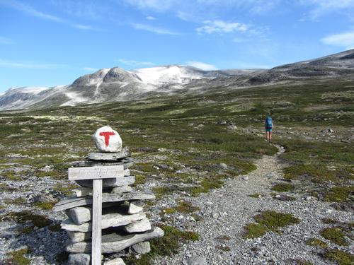 Tafjordfjella, Reinheimen nasjonalpark. Starta på vegen mellom Pyttbua og Reindalsetra.