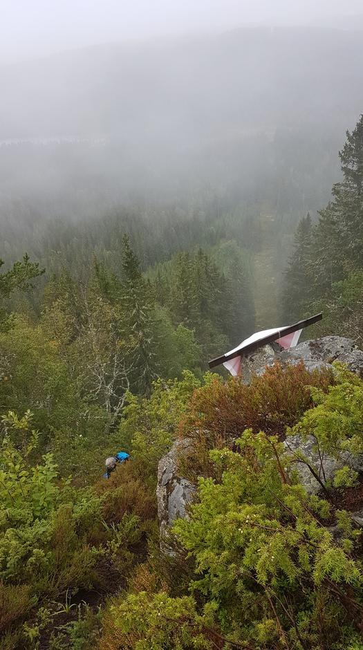 Det er veldig bratt opp til Elgklinten langs Finnskogleden
