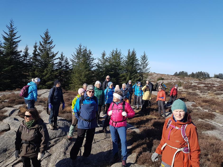 Onsdagsgruppa på veg til Selefjellet