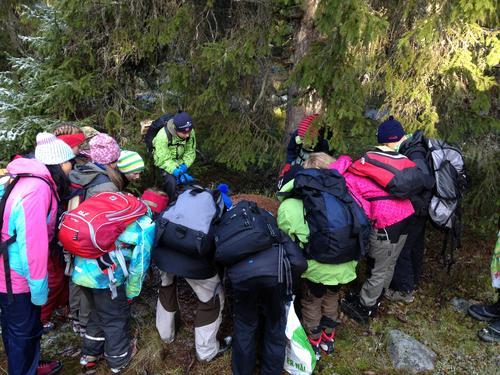 3d07d1c5 Artikler — Hamar og Hedemarken Turistforening