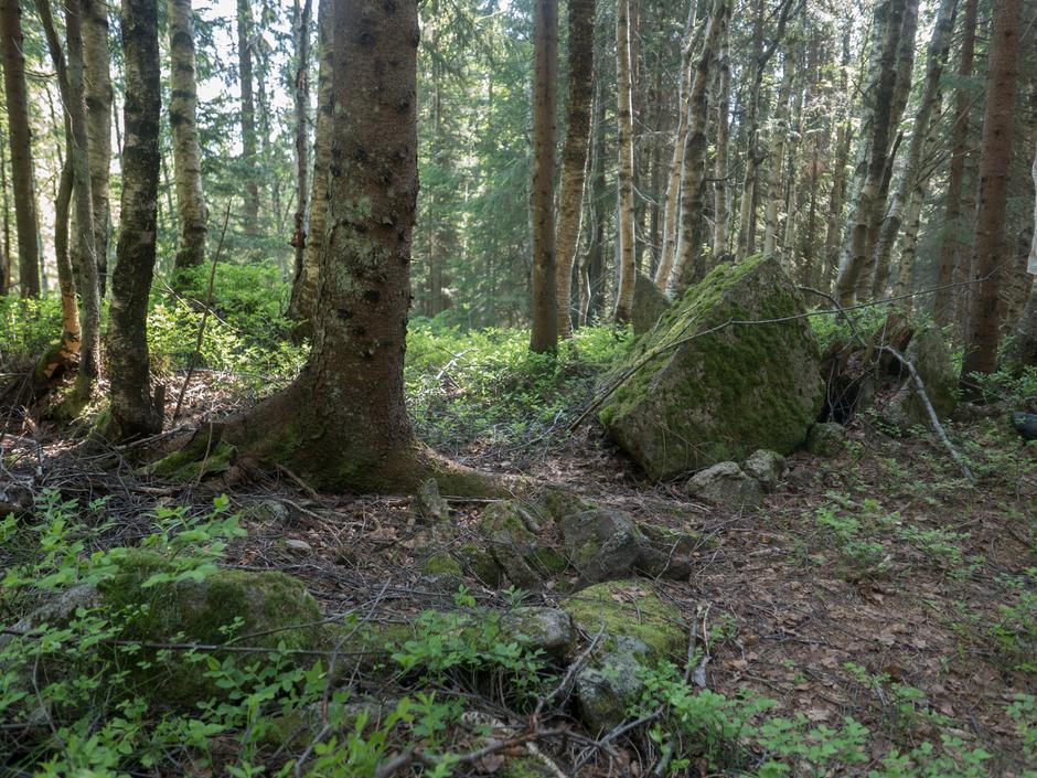 I dag kan vi bare ane hvor de tidligere setrene i Nordmarka lå.  Her er rester av Dølisetra.