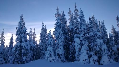 Morning sun at Hafjell.