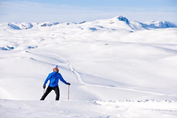 Oppkjørte løyper på fjellet ved Skinnarbu