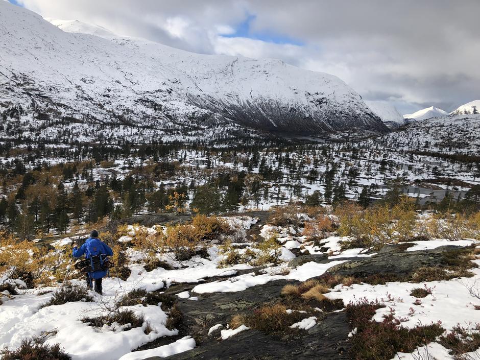 Reindalen