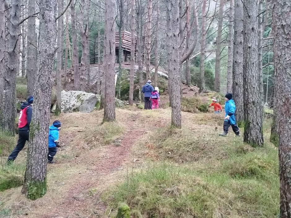 Leik i skogen