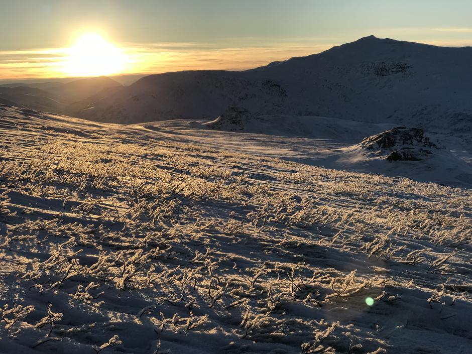 Sola vender tilbake i Bjellådalen på Saltfjellet