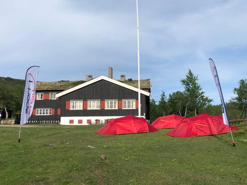 Bo i telt eller hengekøye i sommer