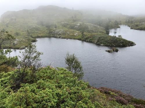 Øvre Hedledalsvatnet