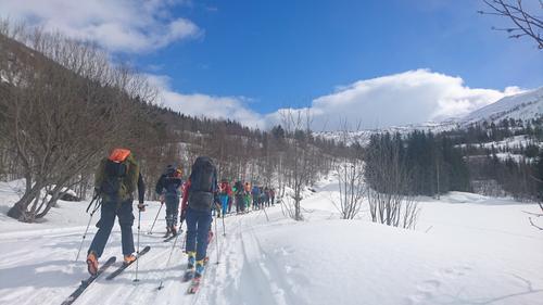 Innmarsjen på ski