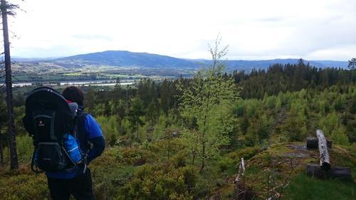 Utsikt mot Mistberget fra Finnkollrunden.