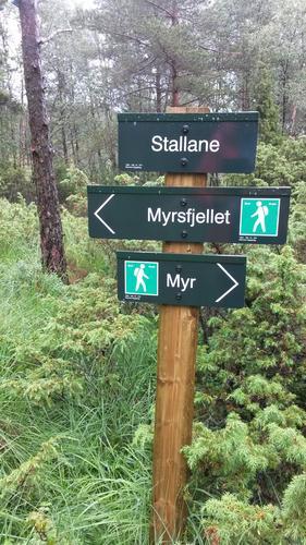 Mot Myrsfjellet