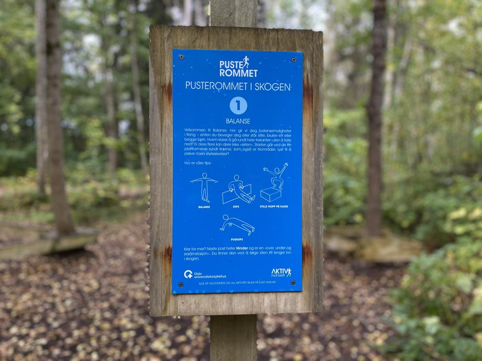 """Pusterommet i skogen"" ved Rikshospitalet i Oslo har laget øvelser langs stien."